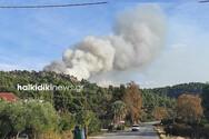 Φωτιά στην Χαλκιδική: Καίει δασική έκταση στη Σιθωνία