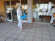 Πάτρα: Πραγματοποιήθηκε η απολύμανση στο δημοτικό κατάστημα και το ΚΕΠ Παραλίας