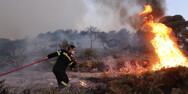 Αχαΐα: Φωτιά στο Καλούσι