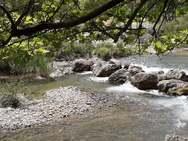 Κράθις - Ένα από τα πιο εντυπωσιακά ποτάμια της Πελοποννήσου (φωτο)