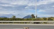 Πάτρα: Όχημα παρέσυρε μια αλεπού στην οδό Κανελλοπούλου