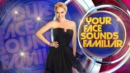 All Star Your Face Sounds Familiar: Έρχεται με παίκτες γνώριμους (video)