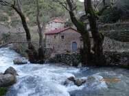 Ο νερόμυλος που στέκει αγέρωχος δίπλα από τον ποταμό του Πείρου (φωτό)