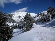 Παρνασσός: Ταξιδέψτε νοητά στις 3 χιονισμένες κορυφές του (video)