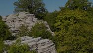 'Πέτρινο Δάσος' - Το εκπληκτικό και σπάνιο αξιοθέατο της Ηπειρώτικης γης (video)