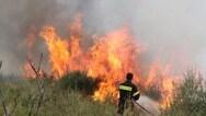 Αχαΐα: Φωτιά στο δάσος της Στροφυλιάς, στο ύψος του Βουπρασίου
