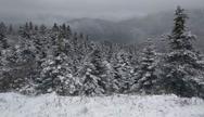 Στα λευκά τα Καλάβρυτα και η Ορεινή Ναυπακτία (pics+video)
