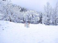 Μικρή 'Ελβετία' η Ζαρούχλα της Αχαΐας από το χιόνι!
