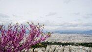 Εξοικονομώ - Αυτονομώ - Ακίνητα: Ανοιχτή η πλατφόρμα για αιτήσεις στην ανατολική Μακεδονία- Θράκη