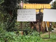 Πατρινός «επιστρατεύτηκε» την πολιτική για να... κρατήσει τους κλέφτες μακριά (φωτο)