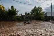 Κακοκαιρία «Ιανός»: Καταβάλλονται οι αποζημιώσεις από τον ΕΛΓΑ στους δικαιούχους - Τα ποσά για τη Δυτική Ελλάδα