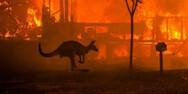 Αυστραλία: Καταστροφικές πυρκαγιές στο Περθ