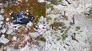 Ναυαγοί σε ερημονήσι στις Μπαχάμες επέζησαν τρώγοντας καρύδες και… αρουραίους επί 33 μέρες