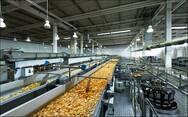 ΙΟΒΕ - Βελτίωση των επιχειρηματικών προσδοκιών στη βιομηχανία τον Ιανουάριο