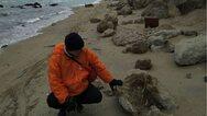 Θεσσαλονίκη: Απολίθωμα τιτανοχελώνας σε παραλία του Δήμου Θερμαϊκού (φωτο)