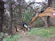 Πάτρα: Συνεργείο του Δήμου προχώρησε σε καθαρισμό του δάσους του Κεφαλόβρυσου