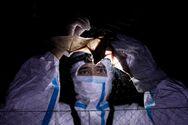 Νυχτερίδες, παγκολίνοι, χοίροι, πτηνά - Ποια ζώα μας μεταδίδουν ιούς