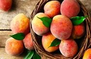 Φρούτα: Πλήγμα για τους κονσερβοποιούς η ολική καταστροφή από τον παγετό