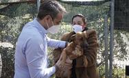 Κυριάκος Μητσοτάκης: Υιοθέτησε σκυλάκι από καταφύγιο που επισκέφθηκε (φωτο)