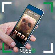 NOSEiD: Η εφαρμογή που βοηθά τα χαμένα σκυλιά να γυρίσουν πίσω στο σπίτι