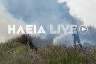 Δυτική Ελλάδα: Υπό έλεγχο η φωτιά κοντά στην εθνική οδό Πύργου - Αρχαίας Ολυμπίας