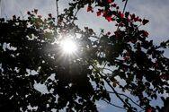 Καιρός: Ζέστη με αφρικανική σκόνη την Παρασκευή