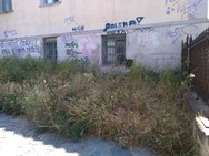 «Κόψτε μας» - Τα χορτάρια «φωνάζουν» έξω από το Παλαιό Δημοτικό Νοσοκομείο
