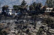 Φωτιά στην Κορινθία: Τεράστια καταστροφή - Κάηκαν πάνω από 71.000 στρέμματα