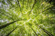 Η παγκόσμια θερμοκρασία μπορεί να αυξηθεί πάνω από 1,5 βαθμό ως το 2025, προειδοποιεί ο ΟΗΕ