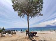 Η στροφή στο ποδήλατο έγινε παγκόσμια τάση - Στην Πάτρα και τη Δυτική Ελλάδα;