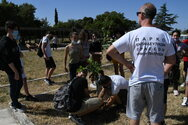 Πάτρα - 'Δες το Σφαιρικά': Μαθητές φύτεψαν δέντρα στο Πάρκο Εκπαιδευτικών Δράσεων (φωτο)