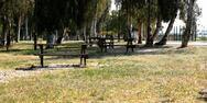 Πάτρα: Δύο ανήλικα κοιμόντουσαν σε παγκάκι στο Νότιο Πάρκο
