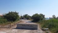 ΟΙΚΙΠΑ: Προστασία του «μαιευτηρίου» των αμφιβίων στο Πλατανόδασος Προαστείου