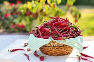 3+1 λόγοι για να εντάξετε τις καυτερές πιπεριές στη διατροφή σας