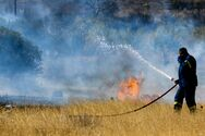 Ηλεία: Φωτιά σε δασική έκταση κοντά στην Κυανή Ακτή