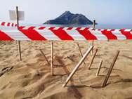 Καλόγρια - Αυξάνονται με γεωμετρική πρόοδο οι φωλιές των θαλάσσιων χελωνών (pics)