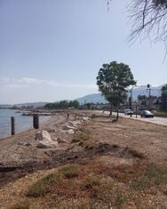 Πάτρα: Εργαζόμενοι του Δήμου καθάρισαν το παραλιακό τμήμα σε Παραλία και Ροΐτικα