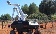 ΑΠΘ: Το ρομπότ τρυγητής «Βάκχος» πιάνει δουλειά στους αμπελώνες