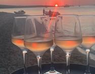 Δείπνο στην Αντίπαρο για Μητσοτάκη, Τζεφ Μπέζος, Τομ Χανκς και Νταϊάν φον Φύρστενμπεργκ