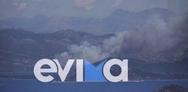 Μεγάλη φωτιά στα Στύρα Ευβοίας: Εκκενώνεται το Νημποριό