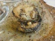 Πάτρα: Τα μαγειρεμένα στρείδια, έκρυβαν μαργαριτάρι! (φωτο)