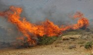 Αχαΐα: Ξέσπασε φωτιά στη Ζήρια - Επιχειρούν και εναέρια μέσα