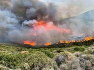 Σε επιφυλακή και επιχειρησιακή ετοιμότητα ο Δήμος Πατρέων λόγω αυξημένου κινδύνου πρόκλησης πυρκαγιάς