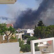 Τουλάχιστον δέκα σπίτια έχουν υποστεί σημαντικές καταστροφές από τη φωτιά στην Πάτρα