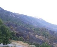 Μέτωπο στη Δροσιά - Η φωτιά έσβησε, ο Ερύμανθος 'λαβώθηκε'