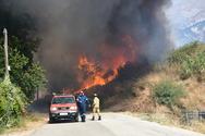 Πάτρα: H Δημοτική Αρχή στο πλευρό των κατοίκων που επλήγησαν από τις πυρκαγιές