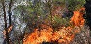 Φωτιά στη Ζήρια - Το επείγον μήνυμα του 112