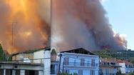 Αχαΐα - Πρόεδρος του Δημοτικού Συμβουλίου Αιγιαλείας Γιώργος Ντίνος: «Καταστράφηκε όλο το χωριό η φωτιά πέρασε από πάνω του»