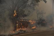 Φωτιά - Αιγιάλεια: Συστάσεις από την Ένωση Πνευμονολόγων στους κατοίκους