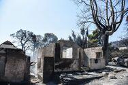 Αιγιάλεια: Συντονισμένες ενέργειες αποκατάστασης των πληγέντων από την πυρκαγιά
